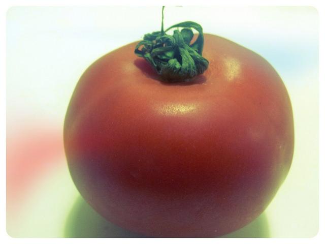 הסוד הכמוס של העגבניה