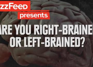 איזה מוח דומיננטי יותר ?